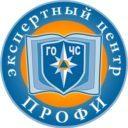 Экспертный центр ГОиЧС «Профи»